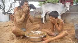 Man bathing in cow dung